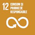 consum si productie responsabile 12