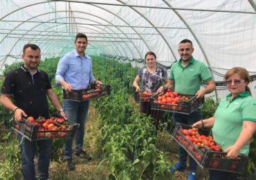 Peste 500 de angajați din magazinele Lidl au fost în vizită la furnizorii de legume și fructe