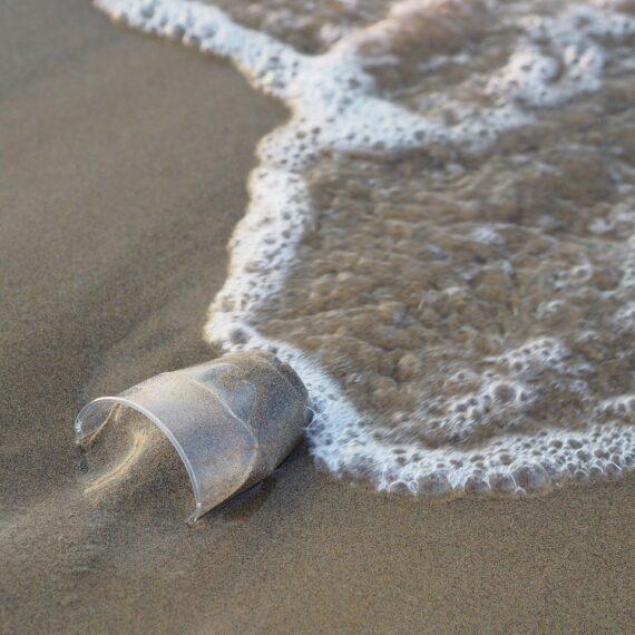 Studiu: Mai mult de 14 milioane de tone de plastic se află pe fundul oceanului planetar