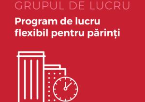 Grup de Lucru_Program Flexibil