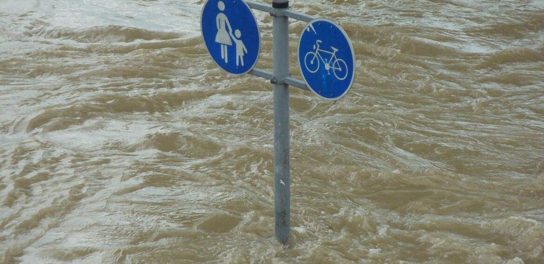 """Avertisment ONU: Schimbările climatice şi bolile vor transforma planeta într-un """"iad nelocuibil"""" pentru milioane de oameni"""