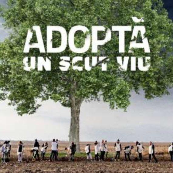 Prima plantare virtuală din România – Ziua în care vom planta un scut viu