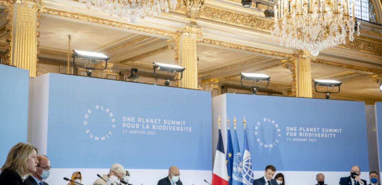 Summitul One Planet. Peste 50 de state se angajează să protejeze cel puțin 30% din pământul și oceanele planetei