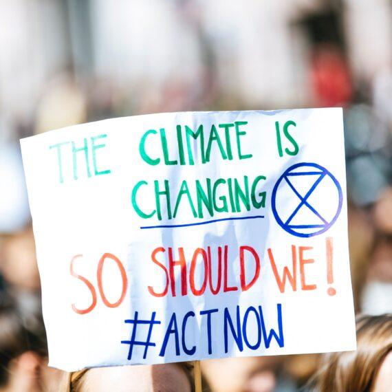 Sondaj: Schimbările climatice, principala îngrijorare a tinerilor europeni