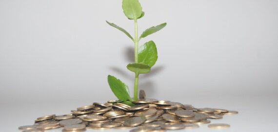 BNR: Economia românească este expusă riscurilor schimbărilor climatice. Aproape 40% din valoarea valoarea adăugată este produsă de firme din sectoare carbon-intensive