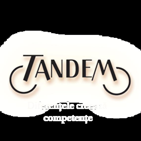 Asociatia Tandem