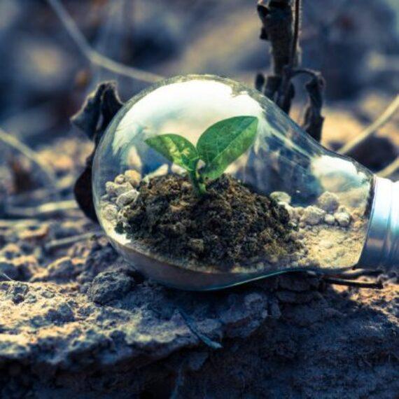 """Comisia Europeană a lansat pachetul """"Fit for 55"""" ce vizează reducerea cu 55% a emisiilor de CO2 până în 2030"""