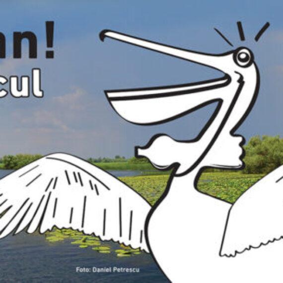 PETlican, un proiect pentru combaterea poluării Deltei Dunării, lansat de Societatea Ornitologică Română